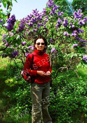 На фоне цветущего куста сирени Леонид Леонов